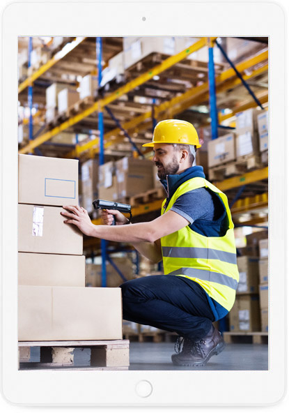 Cybernaptics offers Warehouse Management System implementation and support